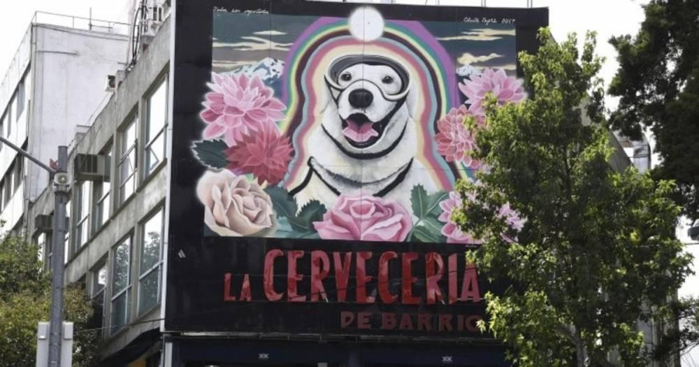 В Мехико создали граффити с собакой, спасшей более 50 человек во время бедствия