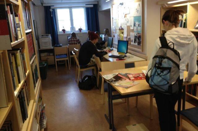 В Финляндии у россиянки отобрали 12-летнюю дочь - правозащитник