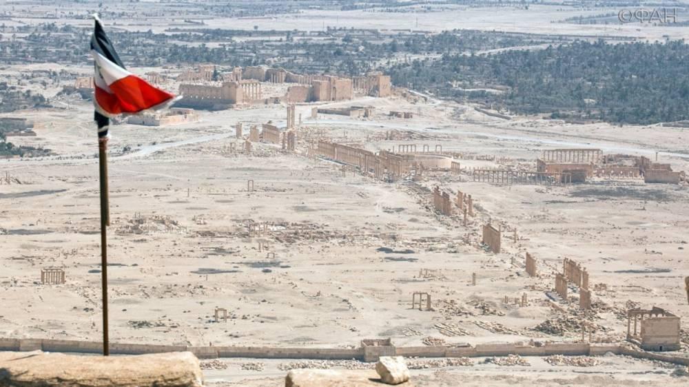 В Госдуме раскритиковали план коалиции по созданию «сил безопасности границы» в Сирии