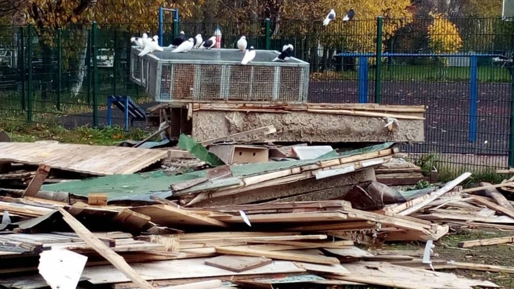 В Петербурге неизвестные разгоромили голубятню и убили птиц