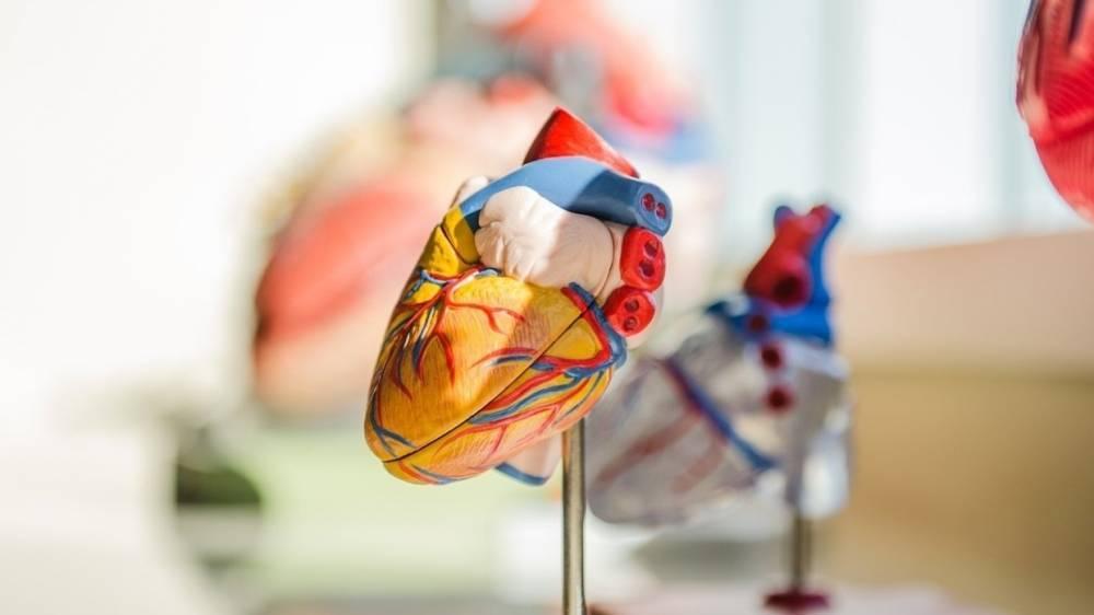 Ученые раскрыли секрет продления жизни при болезнях сердца