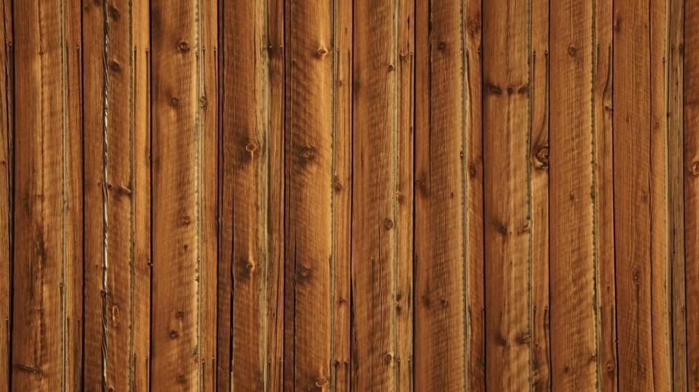 Ученые создали древесину, которая не боится ни огня, ни воды