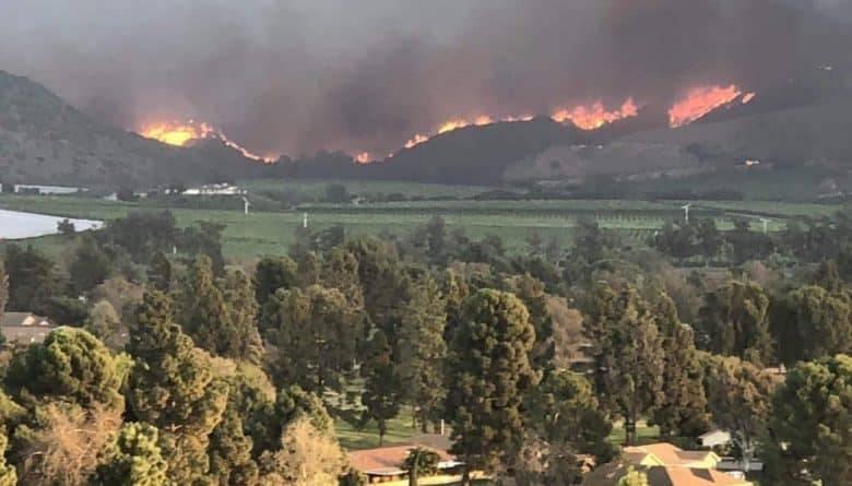 По меньшей мере 5 человек погибли в лесных пожарах, бушующих в Северной Калифорнии: фото и иллюстрации