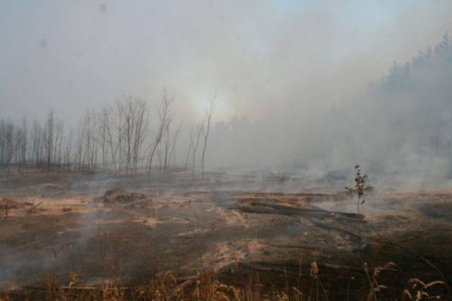 Лесной пожар в Калифорнии добрался до резиденции Уэста и Кардашьян