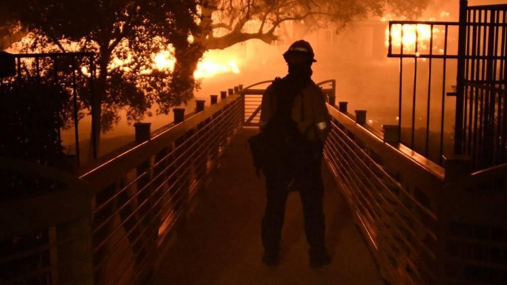 Трамп ввел режим ЧС в Калифорнии из-за лесных пожаров: фото и иллюстрации