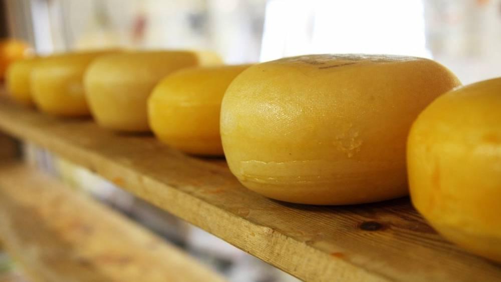 В Норвегии определили сорт лучшего в мире сыра: фото и иллюстрации