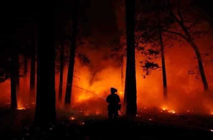 Лесной пожар в Калифорнии стал самым разрушительным в истории штата