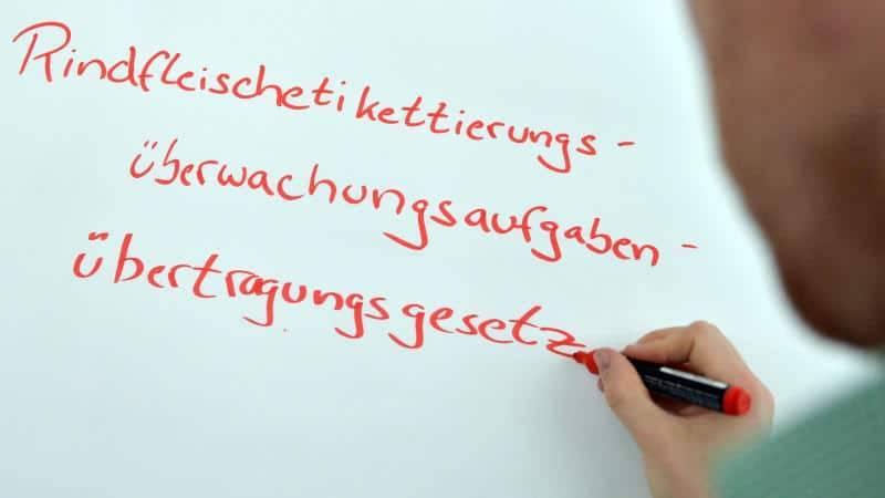 Самые длинные слова в немецком языке