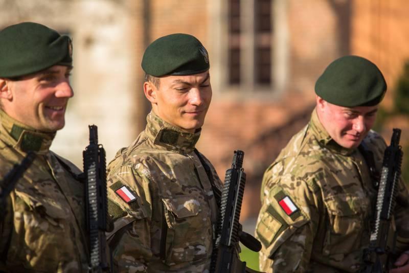Польша создаёт новую механизированную дивизию