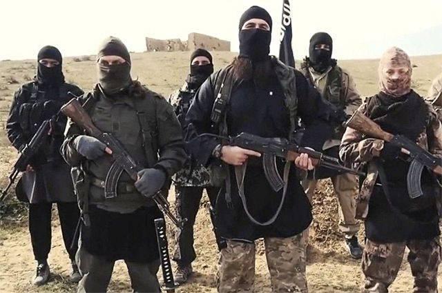 СМИ: сирийская армия взяла под контроль последний оплот ИГИЛ на юге страны