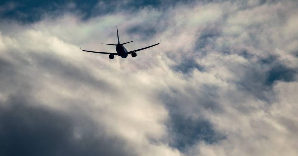 Нижегородца сняли с авиарейса в Домодедово за пьяный дебош