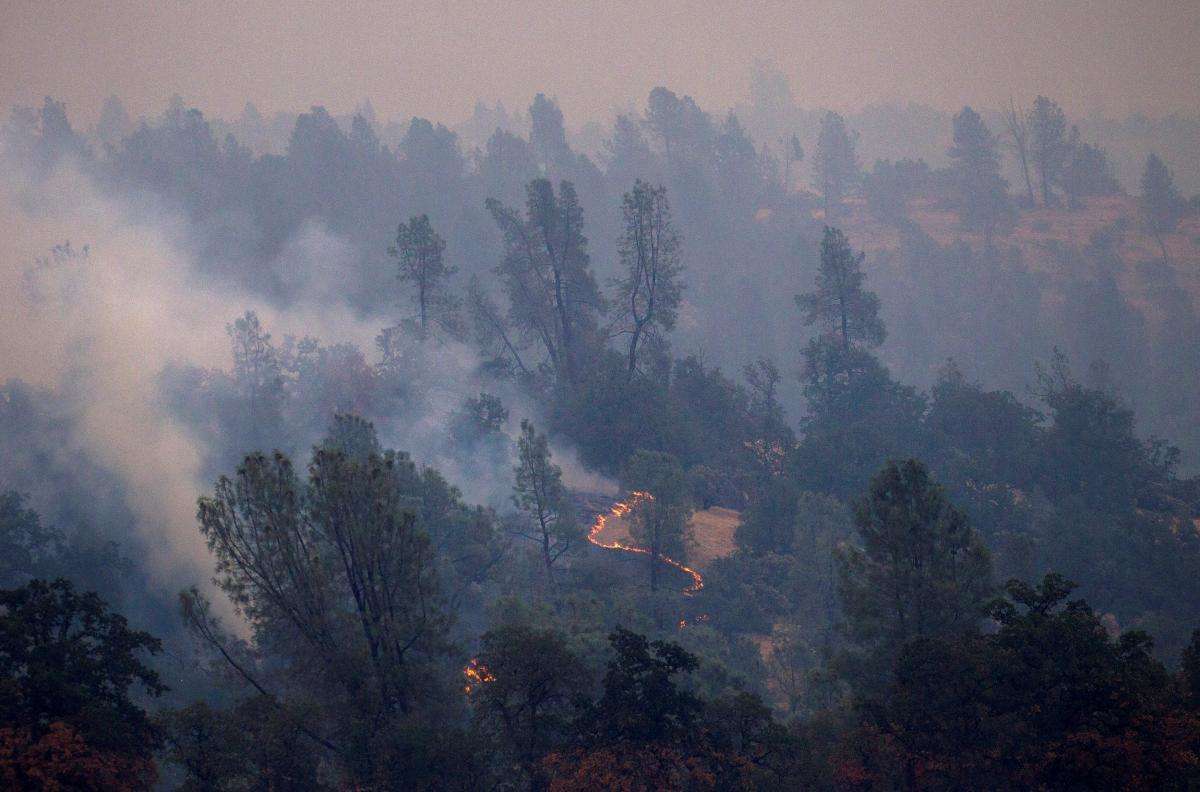 Число погибших из-за лесных пожаров в Калифорнии возросло до 76