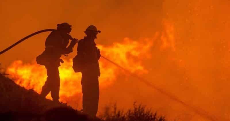 Ущерб от лесных пожаров в Калифорнии оценили в $13 млрд