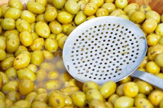 Сирийские фермеры планируют поставлять оливковое масло в Россию