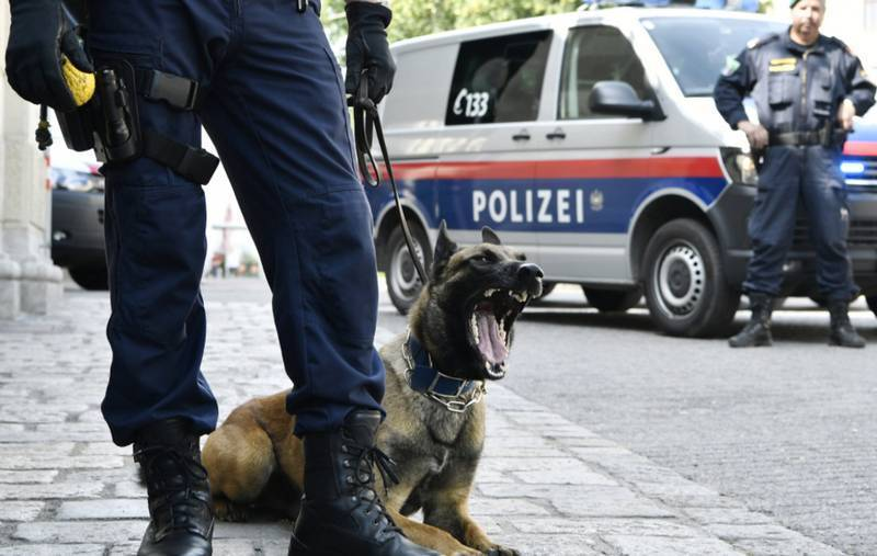 В Австрии задержали экс-военного, якобы шпионящего в пользу России