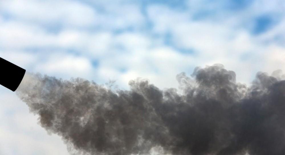 Названы самые экологичные страны мира: Украина лидирует среди постсоветских государств