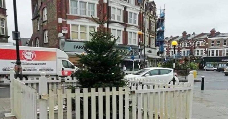 Лондонцы посмеялись над крошечной елочкой в Масуэлл Хилл