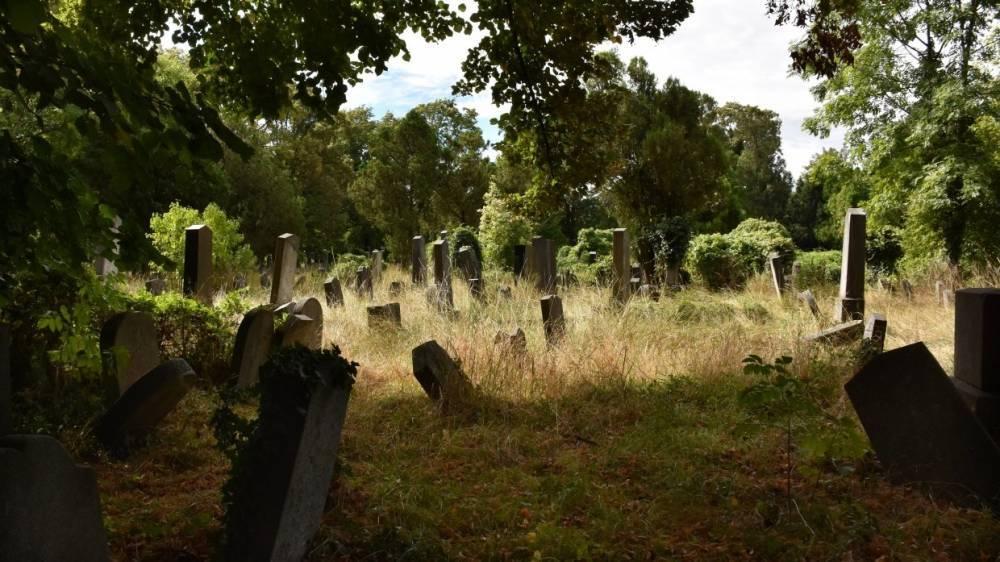 Шведские ученые разрабатывают технологию общения с умершими