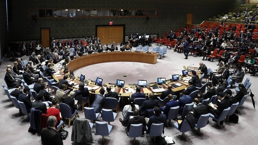 Члены СБ ООН еще не достигли согласия по дате начала перемирия в Сирии— дипломат