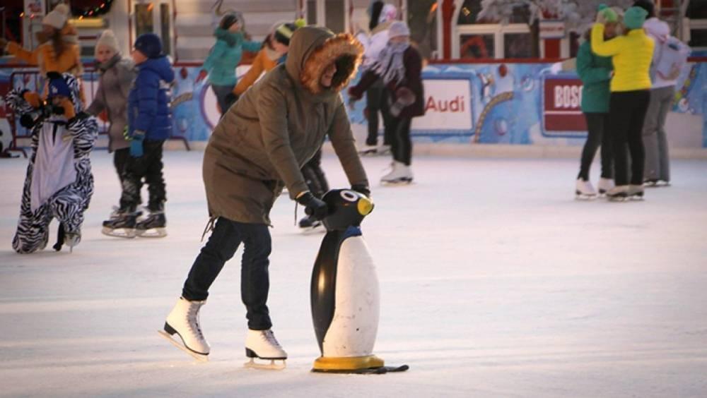 В Москве продлили работу катков в 19 парках из-за морозов