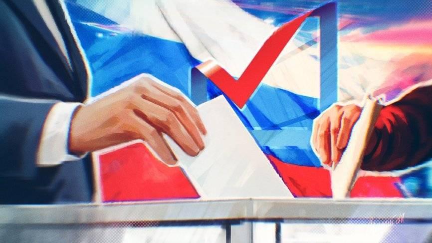 Выборы-2018: 18 марта в Голландии будут работать два избирательных участка