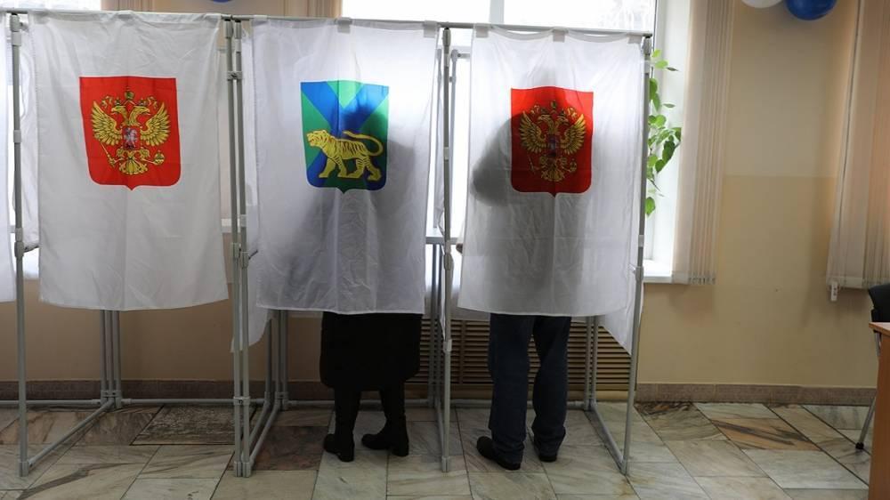 Выборы-2018: эксперт заявил о колоссальной работе ЦИК по повышению мотивации избирателей