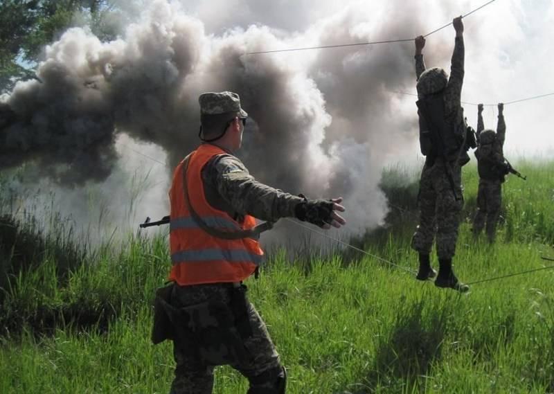 Минобороны Украины закупило смесь для окуривания деревьев вместо дымовых завес