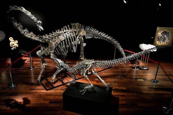 Зачем богатым динозавры за полтора миллиона?