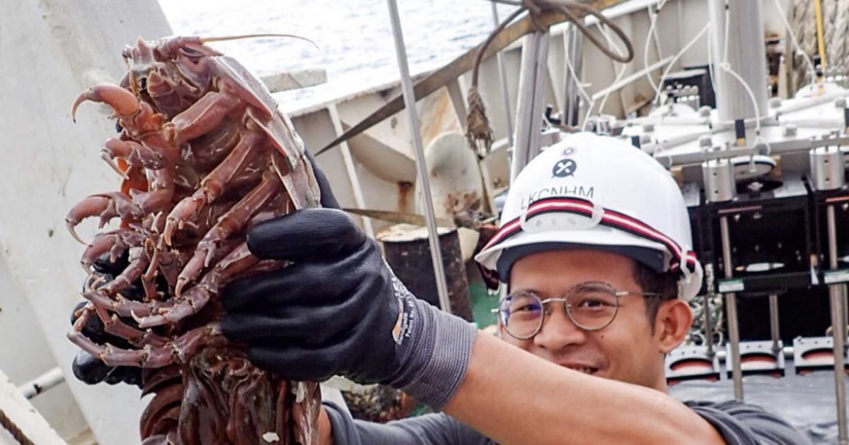 Учёные обнаружили в океане гигантского глубоководного таракана