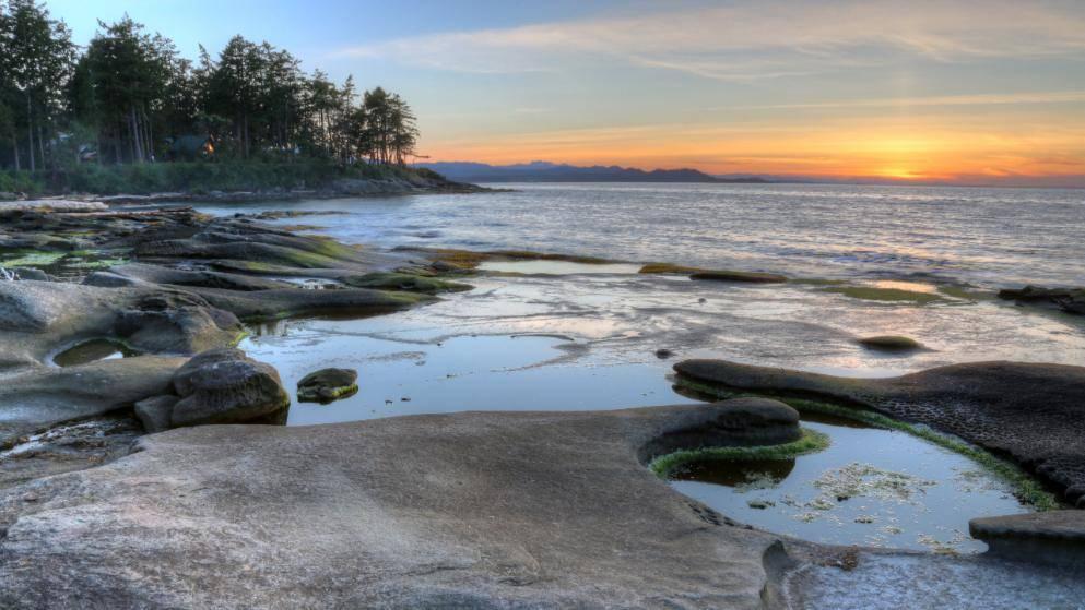 Канадская загадка: 14 человеческих ступней на пляже