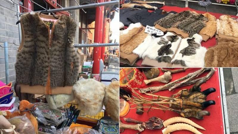 Жилетку из Мурчика не желаете? - Жуткие кадры китайского рынка, где продают изделия из меха котиков и щенков