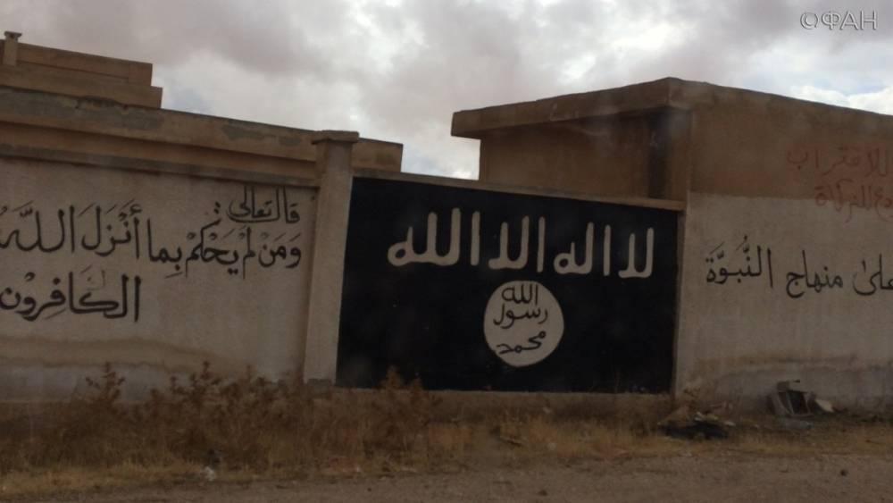 Сирия новости 27 мая 12.30: боевики убили трех жителей города Аль-Баб, военнослужащие РФ погибли под огнем ИГ
