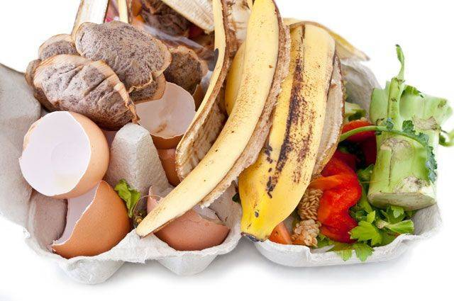 Миф оскорлупе икожуре. Можно ли пищевых отходов получить удобрение?