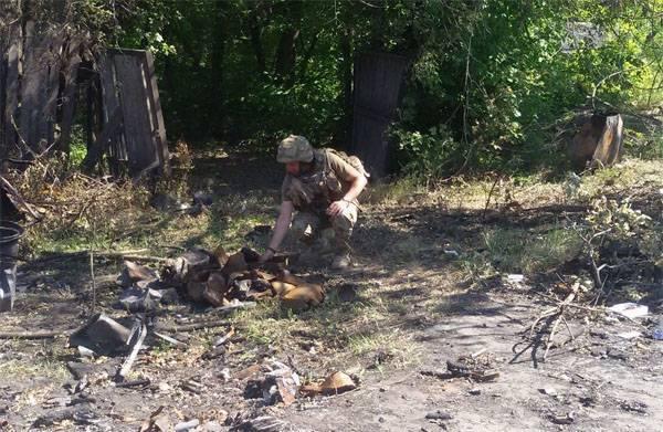 Терпение лопнуло: ВС ДНР уничтожили огневые точки ВСУ под Горловкой