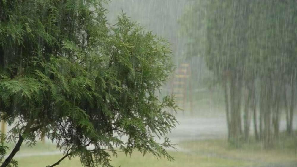 Уровень воды в реке Кубань достиг критической отметки из-за дождей