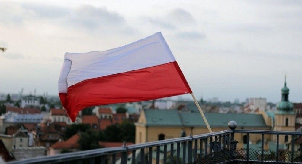Автобус в Польше попал в ДТП из-за косули