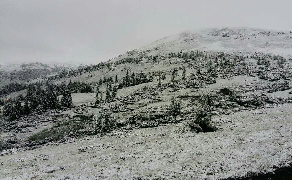 Снежная ловушка в Карпатах: с гор эвакуируют детский лагерь
