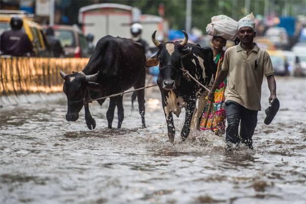 Рост экономики остановит вода. Как водные ресурсы становятся дороже нефтяных