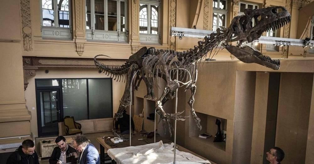 На аукционе в Париже продали скелет динозавра за 2 млн евро