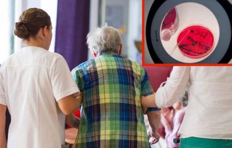 В Бранденбурге вспышка сальмонеллеза – умерло два человека