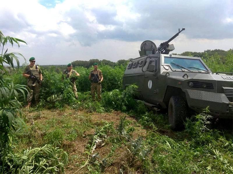 Ударные вертолёты ВВС Украины появились у линии соприкосновения