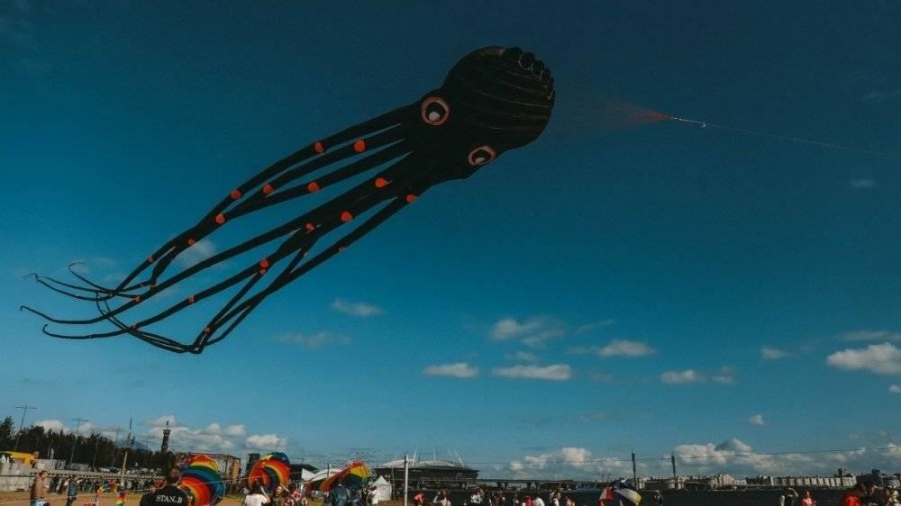 Фестиваль воздушных змеев в Петербурге отменили из-за непогоды