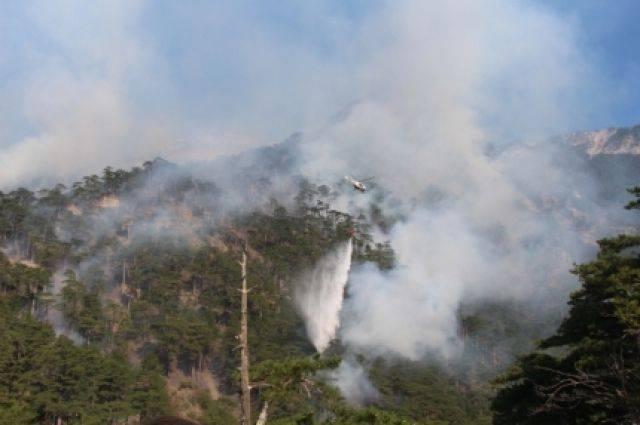 МЧС: площадь природного пожара в Крыму составляет 19 гектаров