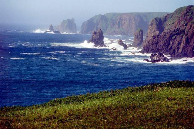 Третья японская бизнес-миссия прибудет на Курилы 17 августа
