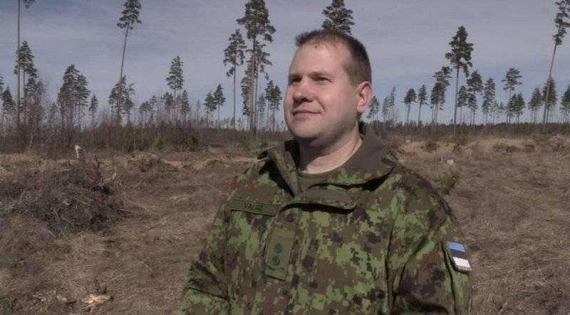РЛС не сработали, ракету не нашли. ВВС Эстонии прекратили поисковую операцию