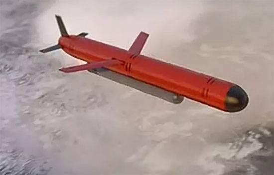 Разведка США: Ракета РФ с ядерным двигателем упала в Баренцево море
