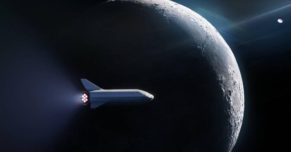 SpaceX выбрала первого туриста для полёта к Луне