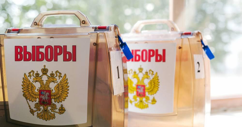 На выборах главы Хабаровского края к 12 утра проголосовало почти 20% избирателей