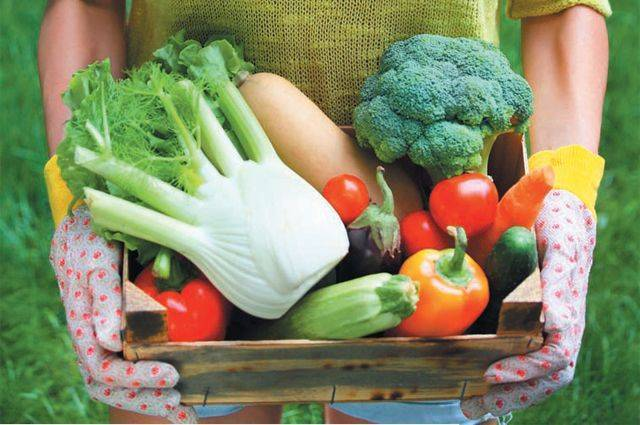 Какие овощи и фрукты лучше не сочетать?