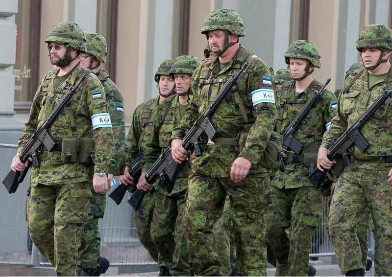 Эстония запланировала рекордные военные расходы на 2019 год